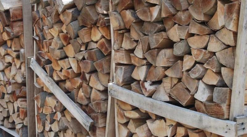11 - 1 drva