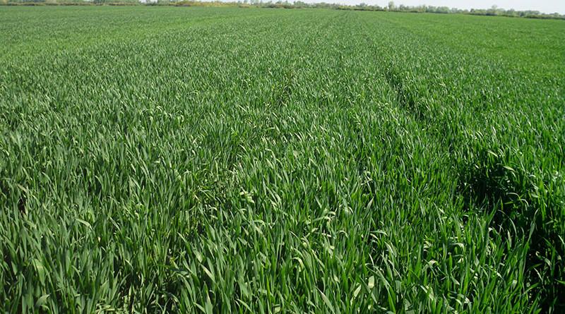 20 - 1 - poljoprivr zemljiste