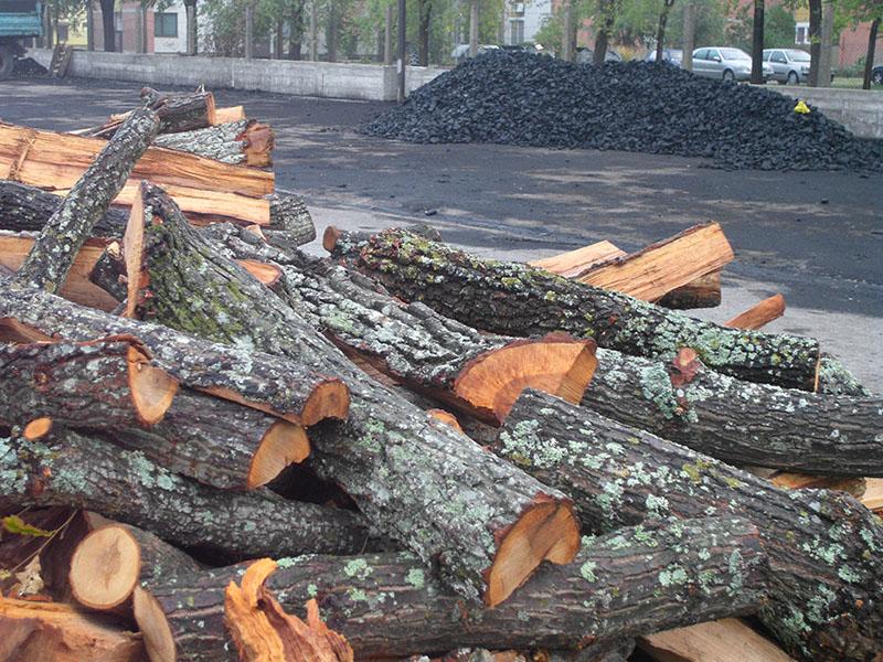 pred-grejnu-sezonu-drvo-2