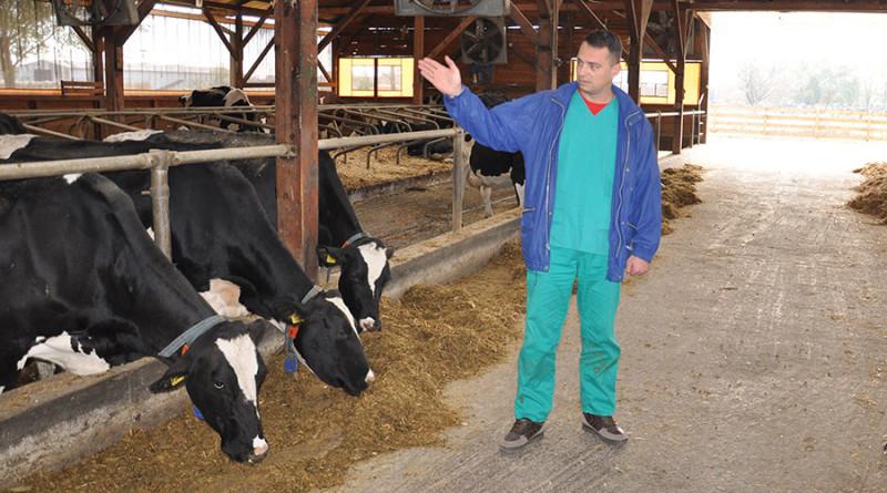 002-zd-20161125lukicevo-vineks-farma-alkohol-krava-slobodan-n