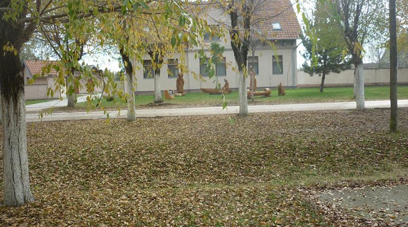 jesen-u-belom-blatu-1