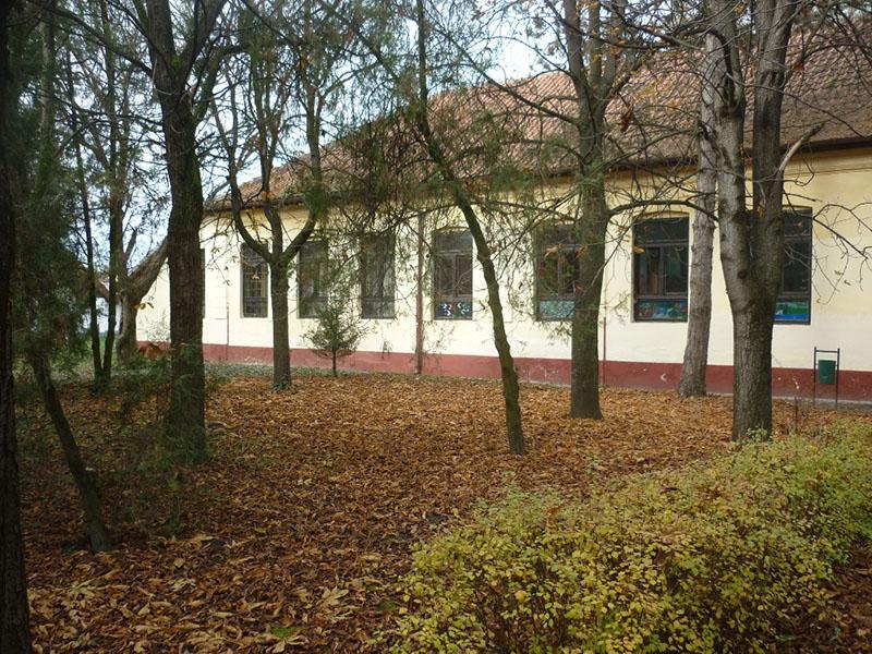 jesen-u-belom-blatu