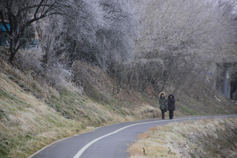 zima-jovan-njegovic-drndak-4