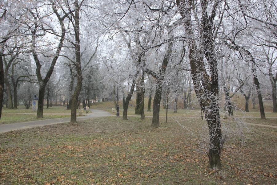 zima-jovan-njegovic-drndak-8