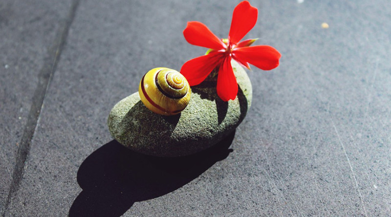 stone-1630298_960_720