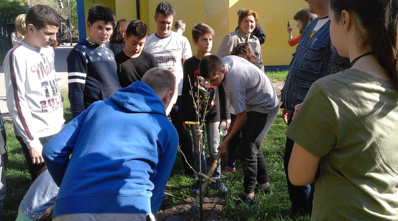 18-1-djaci sade drvece