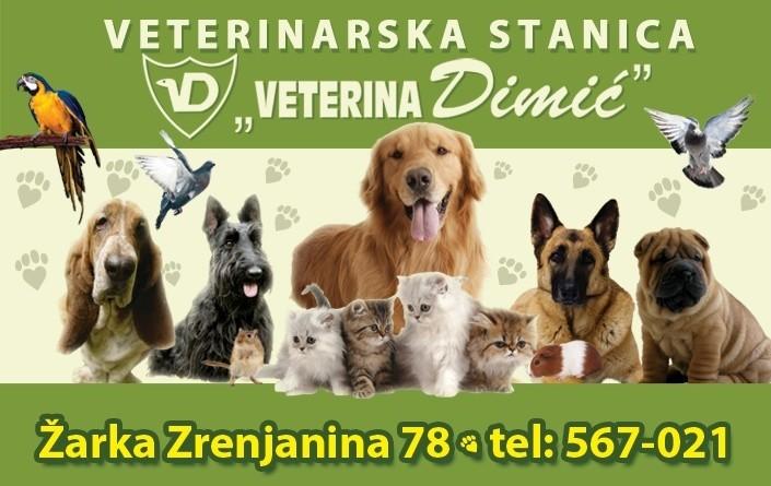 POČINJE DRUGI KONKURS ZA NAJLEPŠEG LJUBIMCA U ZRENJANINU: Čitaoci biraju, mi nagrađujemo!