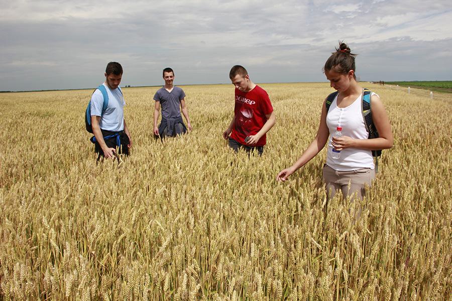 3-Dan polja Detalj sa proslogodisnjeg okupljanja pljoprivrednika i strucnjaka
