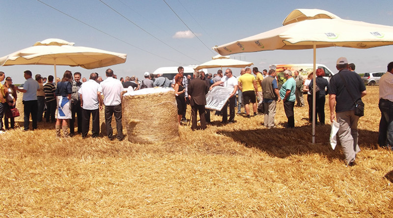 3-Dan polja Detalj sa proslogodisnjeg okupljanja poljoprivrednika i strucnjaka II