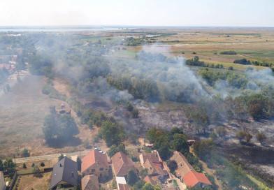 VELIKE RAZMERE POŽARA KOD EČKE: Izgorelo 45 hektara rastinja i mlade šume