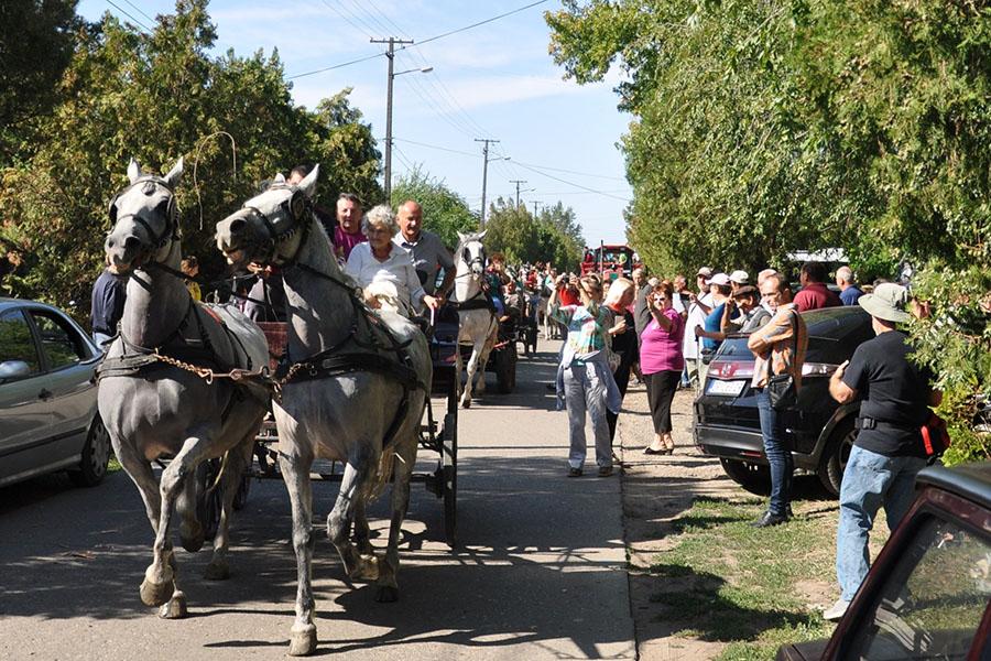 04 zd 20170922 torda festival kukurza (4)