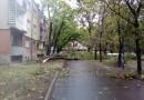 NEVREME NAD GRADOM: Drveće padalo kao posečeno
