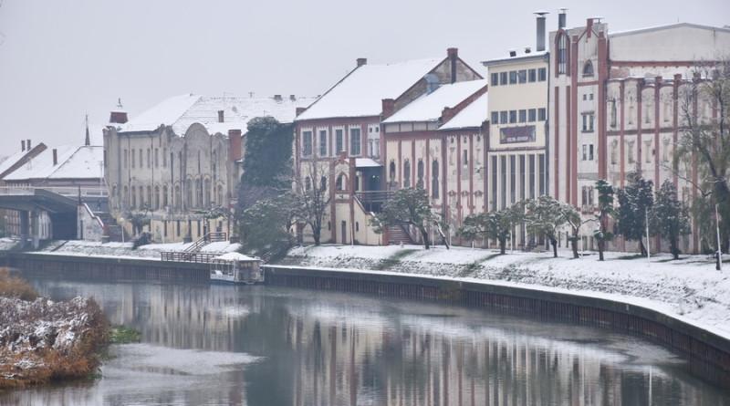 njegovic drndak jovan photo 0007_prvi sneg