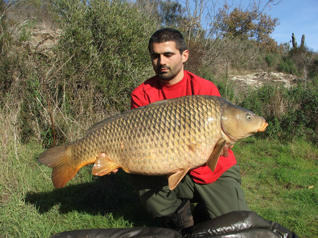 Bojan Bojanić: šestrostruki šampion Srbije u šaranskom ribolovu