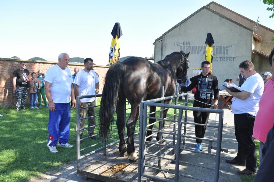 20180422 cestereg III straparijada konj 94 (4)