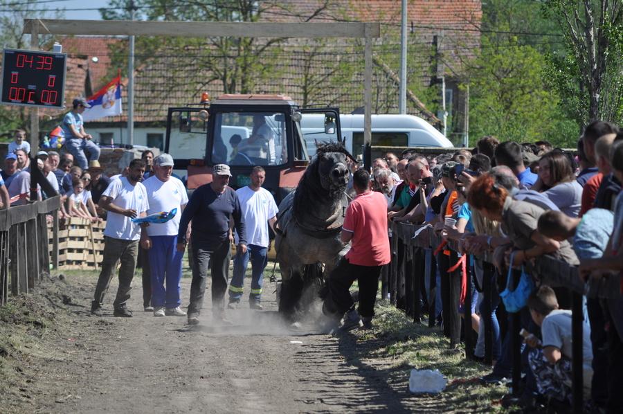 sokol 20180422 cestereg III straparijada konj 18 (1)