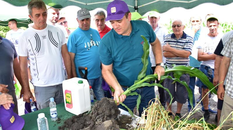 Biofor jaca koren kukuruza