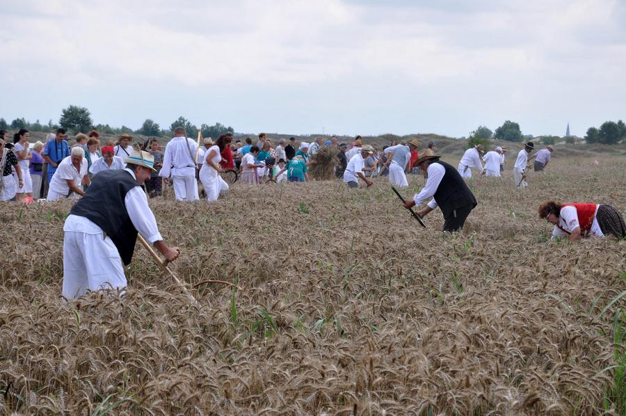 20180707 muzlja zetalacki dani (14)