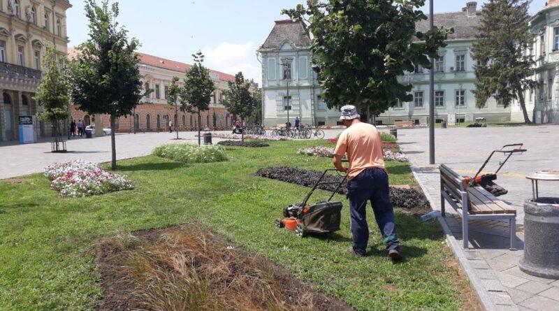 "JKP ""ČISTOĆA I ZELENILO"" DETALJNO UREĐUJE GRAD: Angažovan maksimalan broj radnika i kompletna mehanizacija"