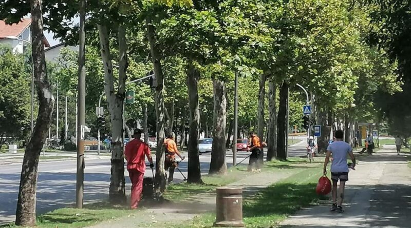 "RADNE AKCIJE JKP ""ČISTOĆA I ZELENILO"": Za lepši i čistiji grad"