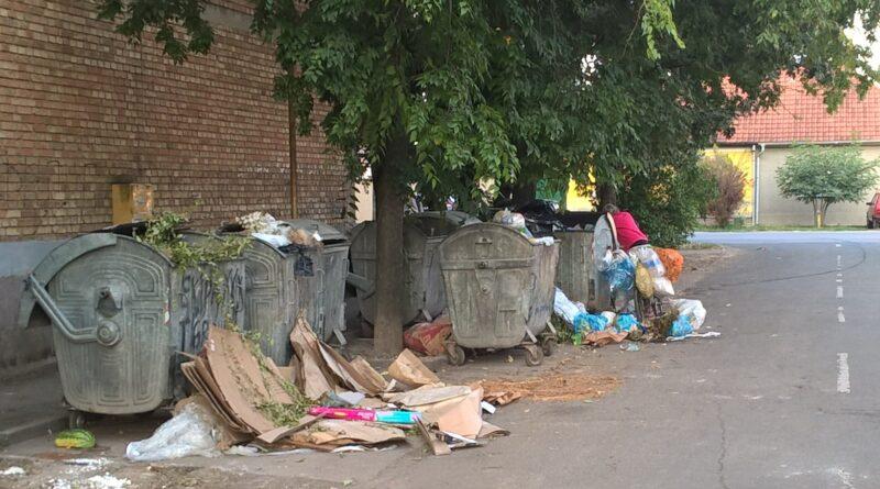 ZRENJANINSKI SOCIJALNI FORUM: Gradonačelnik da reaguje zbog problema komunalne higijene