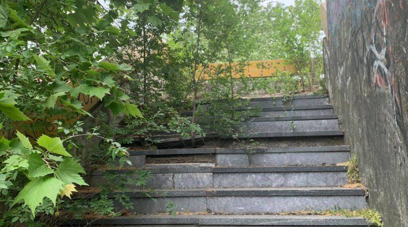 NADVOŽNJAK: Zaraslo stepenište